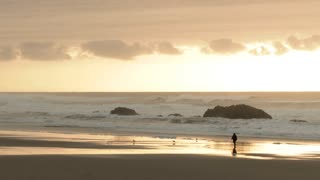 Person Walking Pacific Coastline At Sunset