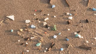 Picking Up Plastic Pollution At Beach