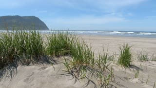 Sandy Beach At The Oregon Coast