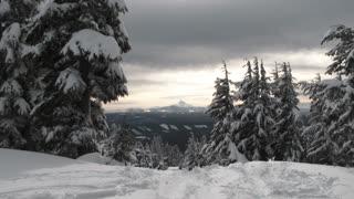 Snowboarders Find Fresh Powder Through The Trees