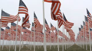 USA Flags Waving At Fallen Soldiers Memorial