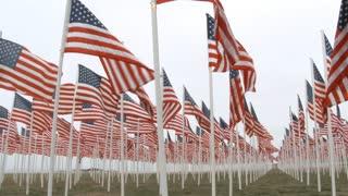 Veteran Among Fallen Soldiers Memorial