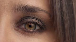 closeup of womans green eye watching at the camera. Warm brown makeup