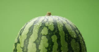 watermelon covered by drops of water rotating on green background