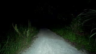 POV walking down pitch black scary path at night. At midnight, finding a way to escape the dangerous area down a deserted overgrown scary footpath with ghosts and monsters lurking.