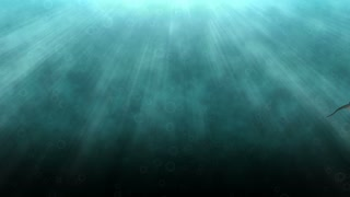 Animated catfish in clear blue water