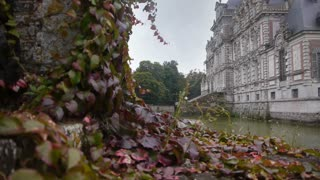 Close-up leaves and chateau de Beaumesnil in the distance