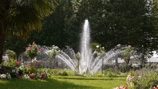 Jardin de L'Eveche, fountain and palm tree in Lisieux