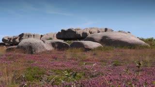 Pink granite rocks at Ploumanach. Bretagne France