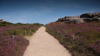 Ploumanach granite coastline. Bretagne France