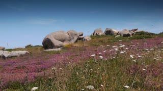 Red rocks at Ploumanach. Bretagne France