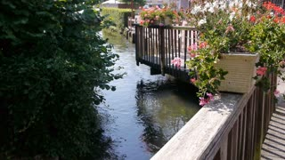 Small river and blooming flowers in Cormeilles, Normandy France