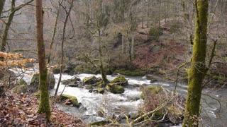 Wild river in nature park Eifel, Germany