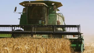 26 august 2016, Israel. Harvesting of wheat. The harvester collects the grain and straw