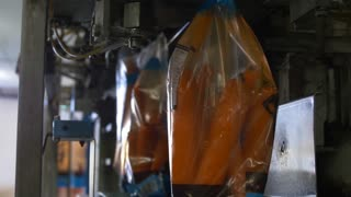 Agriculture Technology. Automated packaging system of carrots