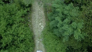 Car going through the beatiful forest, aerial shooting