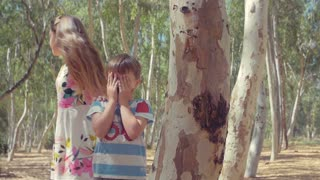 Children playing hide and seek in the woods among the trees sunlight