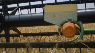 Combine harvester harvests ripe wheat. Slow motion,close-up