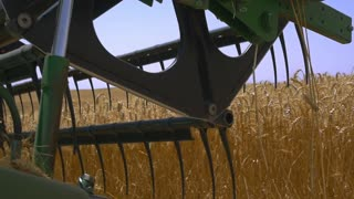 Cutterbar harvester closeup. Harvest in the fields. Slow motion,steady shot