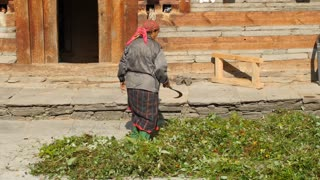 MANALI, INDIA - 28 SEPT 2016: Indian woman scatters hay in front of the house in Indian village, Himachal Pradesh, Kullu Valley
