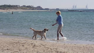A girl playing with a dog on the beach in Israel.