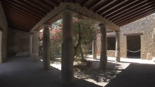 POMPEII, ITALY - 10 JULY 2017: Exotic trees the gardens of ancient Pompeii.