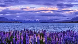 Primal Earth Images Lake Tekapo Mountains Timelapse 4 K Stock
