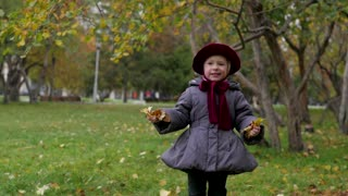 little girl collects autumn foliage in the park