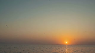 Beautiful sunset or sunrise over a tranquil ocean with sea gull birds  flying