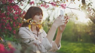beautiful young red-haired woman among cherry blossom sakura tree spring pink flowers making selfie on smartphone on sunset