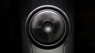 Professional studio subwoofer speaker