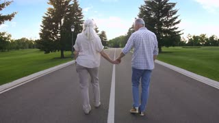 Back view of fit cheerful senior couple walking on a road in countryside holding hands. Young at heart aged married couple enjoying life and nature, jumping and strolling together. Steadicam shot