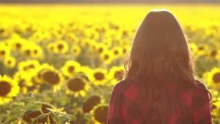 Beautiful brunette girl smiling in sunflower field