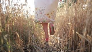 Carefree woman walking in ripe wheat field