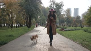 Charming woman texting on phone while walking dog