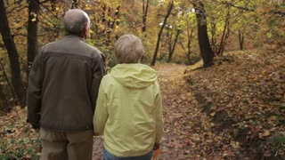 Elderly couple in love embracing in autumn