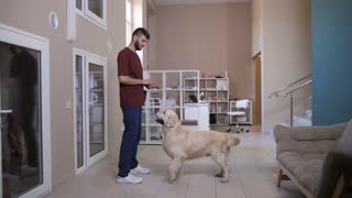 Full length of vet doctor and golden retriever during training at pet clinic. Young veterinarian using treat to teach and train dog to stand on hind legs. Male praising the pet and giving a treat