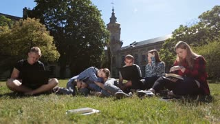 Group of tired students studying hard on park lawn