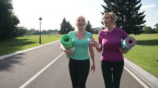 Pretty adult women going to training in the park