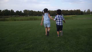 Rear view of two asian carefree little siblings holding hands running in summer park. Positive playful preschool sister holding hand of younger brother playing, having fun while running on green lawn.