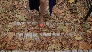Sexy female legs in high heels walking up stairs