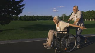 Side view of funny and cheerful happy senior couple enjoying outdoors. Senior bearded husband running and pushing wife in wheelchair. Happy woman raising arms and having fun. Steadicam shot