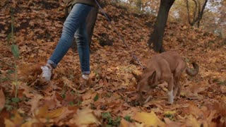 Young female and her pet take a walk in the forest