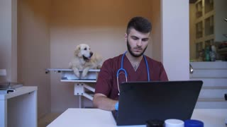 Young handsome bearded vet doctor sitting at the table in pet care clinic and using laptop computer to prescribe medication to dog patient after checkup and diognosis. Retriever lying on exam table