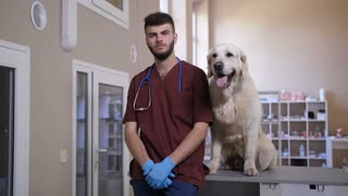 Young veterinary professional in uniform, gloves and stethoscope smiling at camera crossing arms while his dog patient sitting near on examination table at clinic. Golden retriever with vet posing