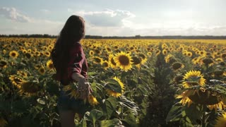 Young woman walking away in sunflower field