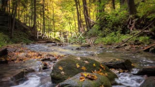 Elegant Parallax Photo Slideshow