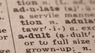 Adult - Fake dictionary definition of the word with pencil underline
