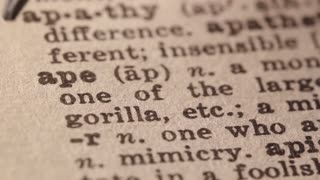 ape - any of various primates with short tails or no tail at all. Macro close up of Pencil underlining the word Ape in fake Dictionary definition of the word, paper texture visible.