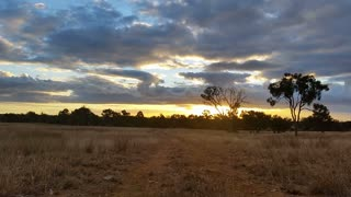 Australian Landscape Dirt Road Sunset / Sunrise